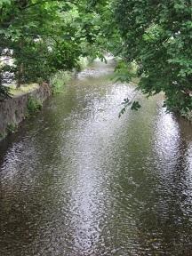 桂川・1.JPG