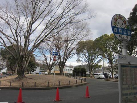 森林公園・バス停.JPG