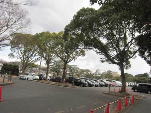 森林公園・駐車場.JPG
