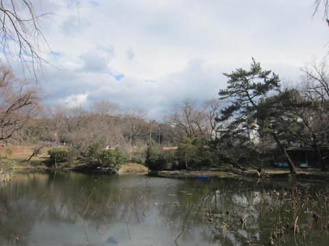森林公園・1.JPG