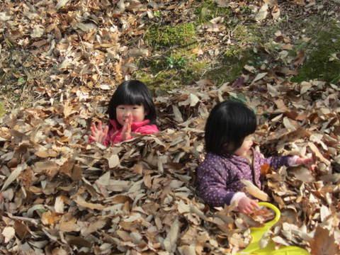 森林公園・4.JPG