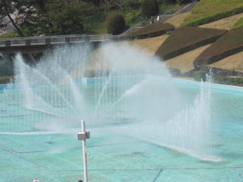 池・4.JPG