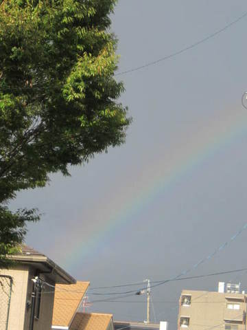 虹・2.JPG