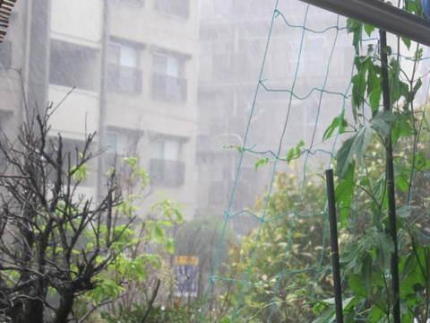 豪雨・4.JPG