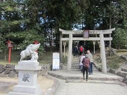 2の4和気神社狛亥・1.JPG