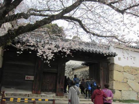 2の7姫路城内門と桜・1.JPG