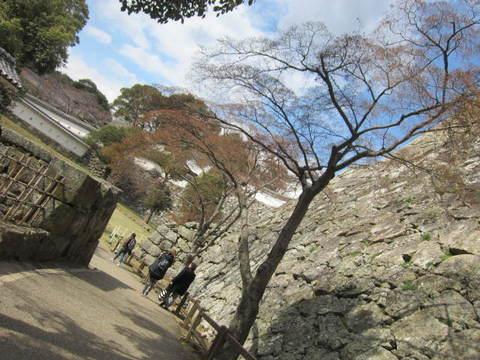 2の9姫路城石垣ともみじ.JPG