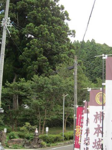 4・鳳来道の駅三河三石3.JPG
